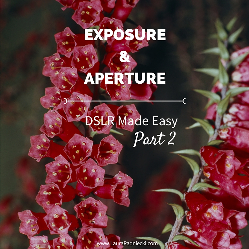 DSLR Made Easy- Part 2 - Exposure and Aperture