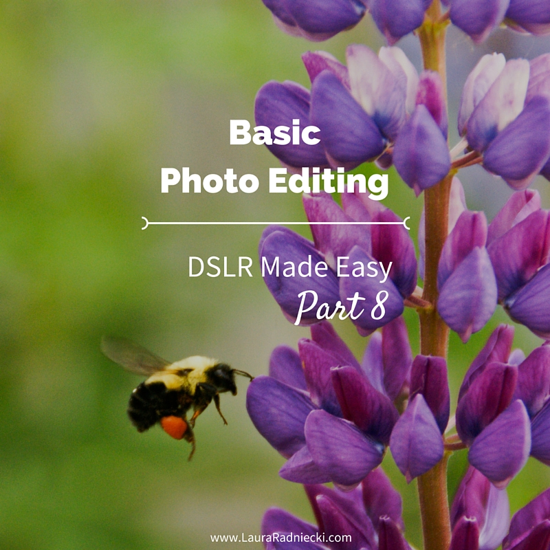 DSLR Made Easy- Part 8 - Basic Photo Editing