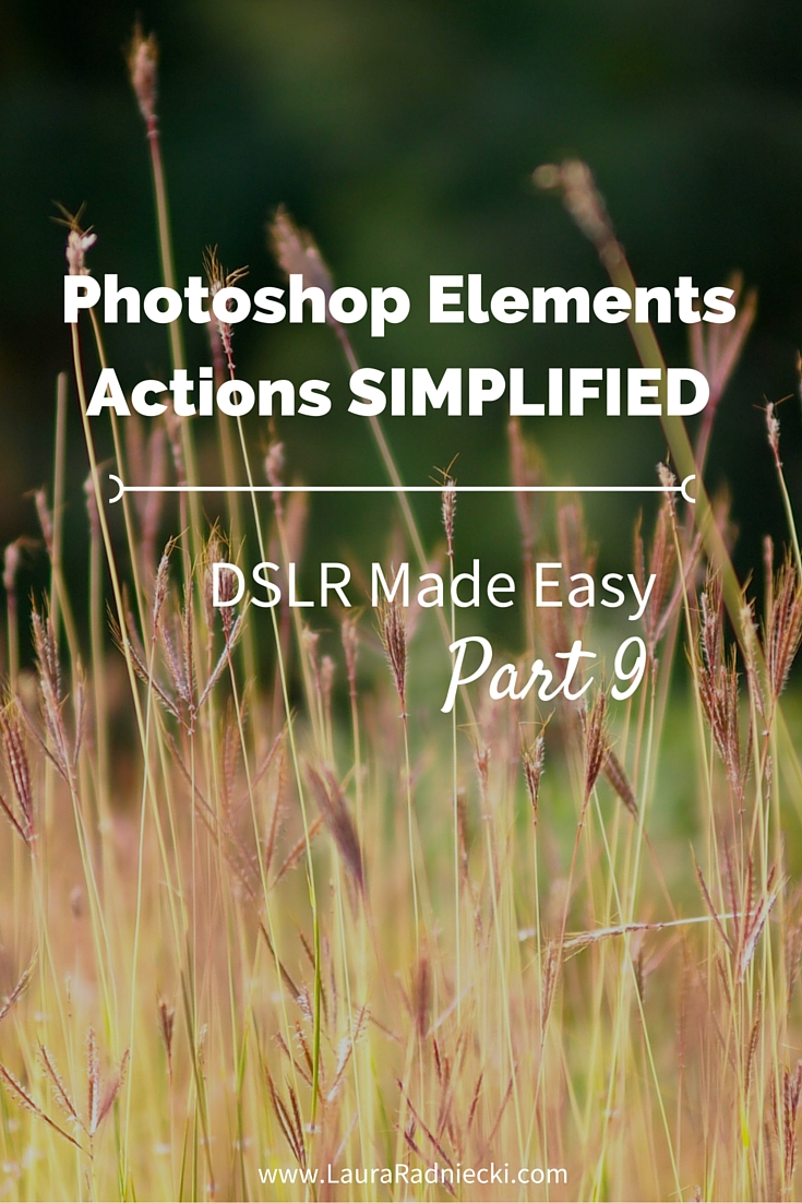 DSLR Made Easy- Part 9 - Photoshop Elements Actions Simplified