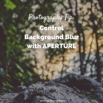 Photography Tip- Control Background Blur with Aperture