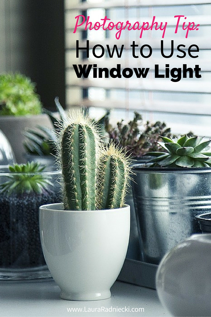 Photography Tip- How to Use Window Light