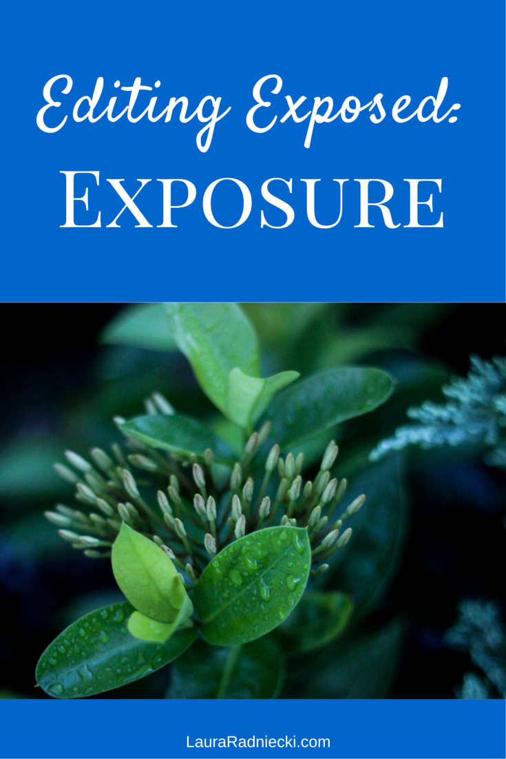 Editing Exposed: Exposure | Photography Tip