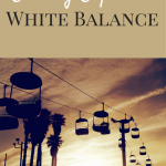 Editing Exposed - White Balance   Photography Tips and Tutorials by Laura Radniecki