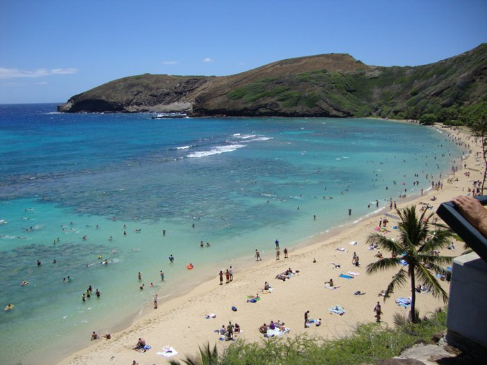 Haunauma Bay Snorkeling on Oahu, Hawaii by Laura Radniecki