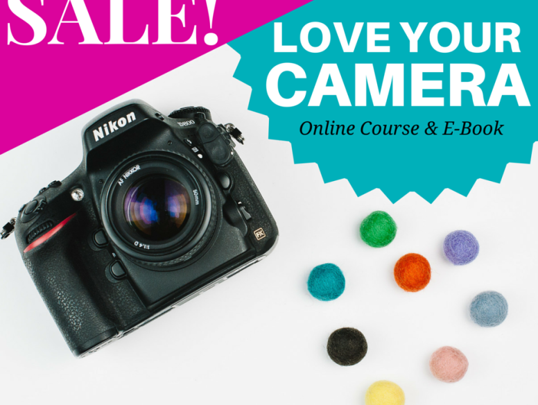 Love Your Camera Course - Launch Sale - HALF PRICES - Laura Radniecki