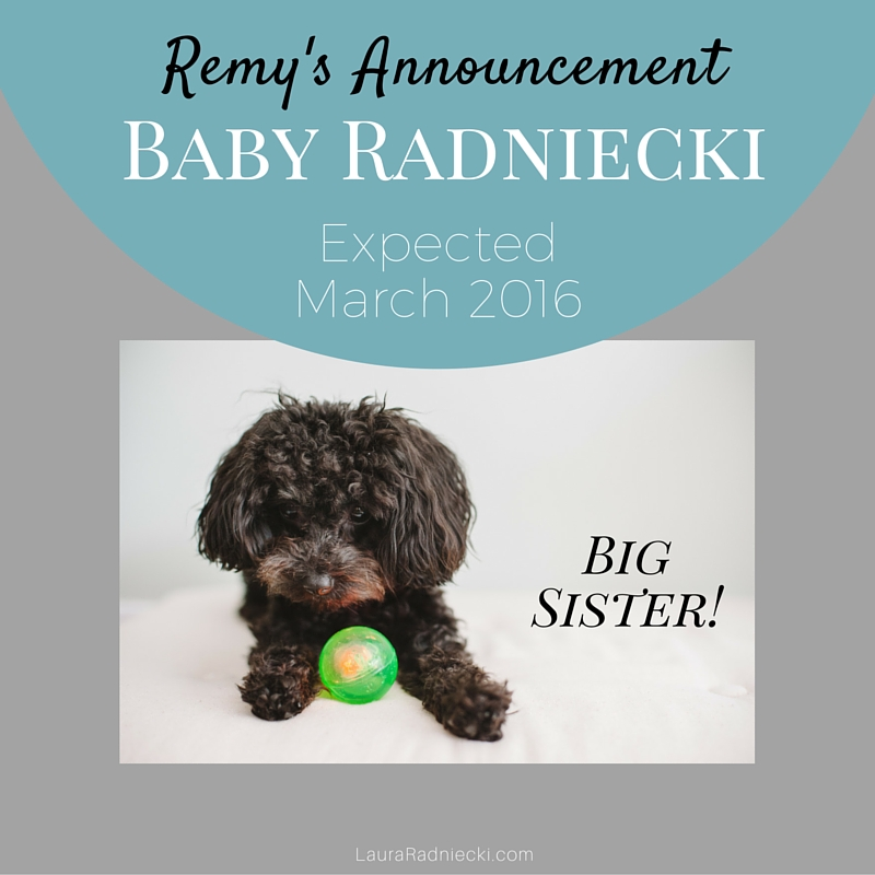 Remy's Announcement | Pregnancy and Baby Announcement