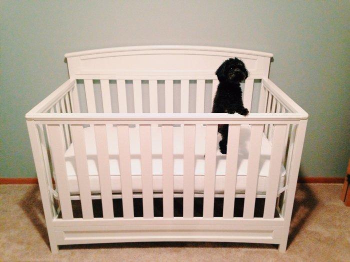 25 Weeks Pregnant - 25 week pregnancy update