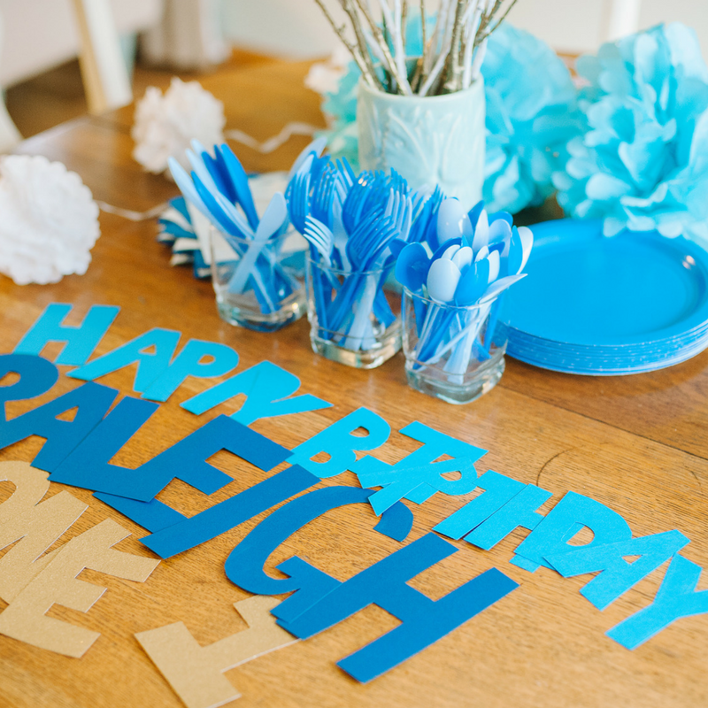 Raleigh's First Birthday | Blue Themed Birthday Party