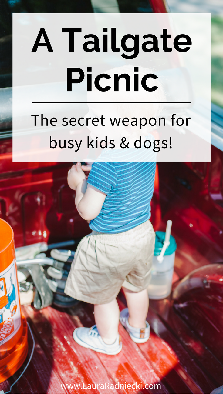 A Tailgate Picnic - A Cornerstone of Our Summer - The secret weapon for having a picnic with busy kids and dogs.