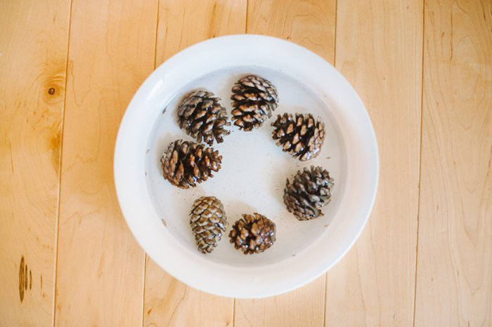How to Clean Pinecones