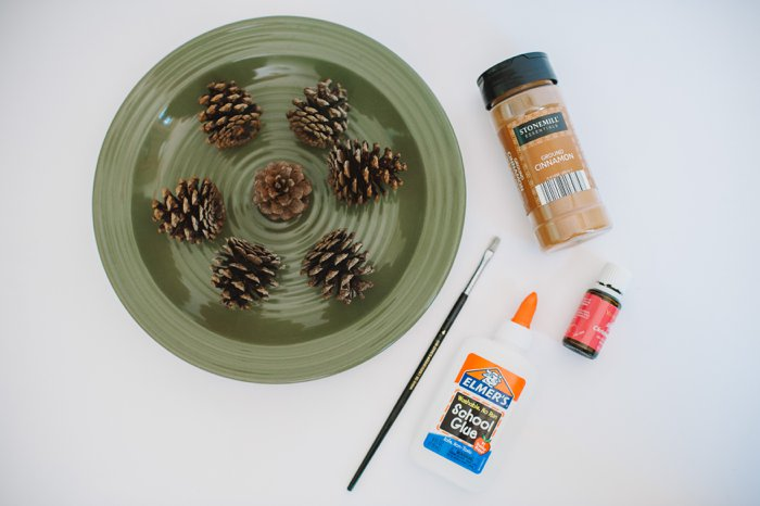 Holiday Crafts with Pinecones