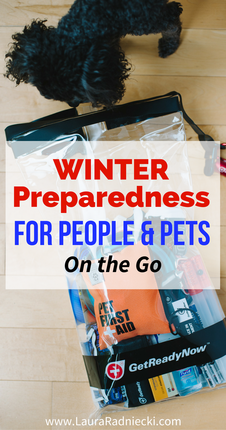 Winter is coming; you need to be prepared on the road! Tips for winter preparedness for people and pets, with Get Ready Now Road Pups & Peeps Road Pack.