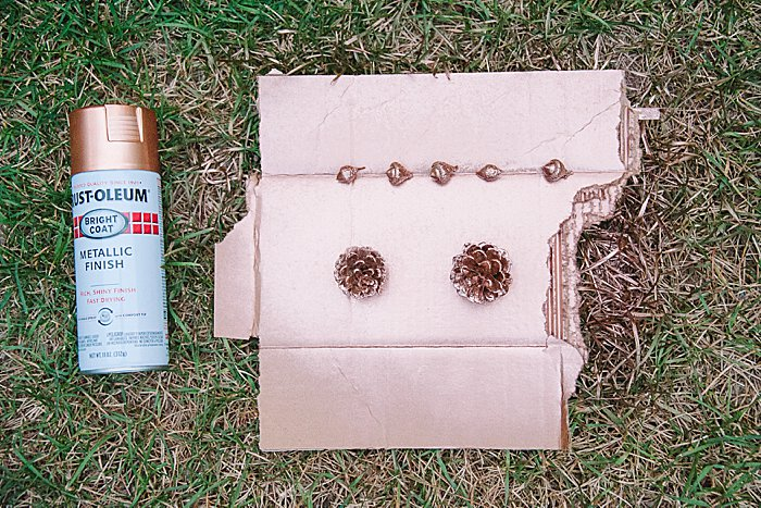 copper or rose gold pine cones