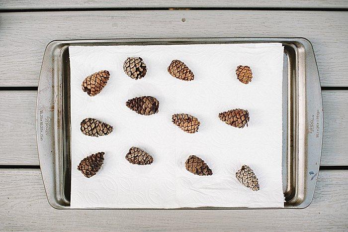 Let pine cones air dry on paper towel lined cookie sheet until fully dry and open.