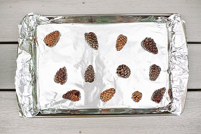 Bake pine cones on foil lined cookie sheet in 200 degree oven.