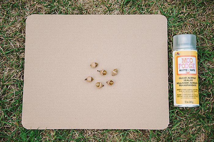 coat acorns with clear acrylic sealer for how to make acorns shiny