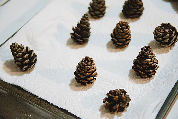 pine cones close when they're wet. They open when they dry out.