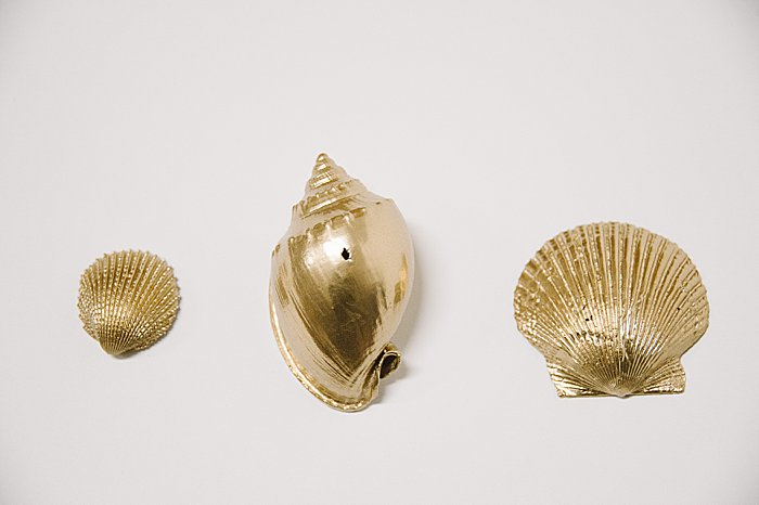 gold painted seashells
