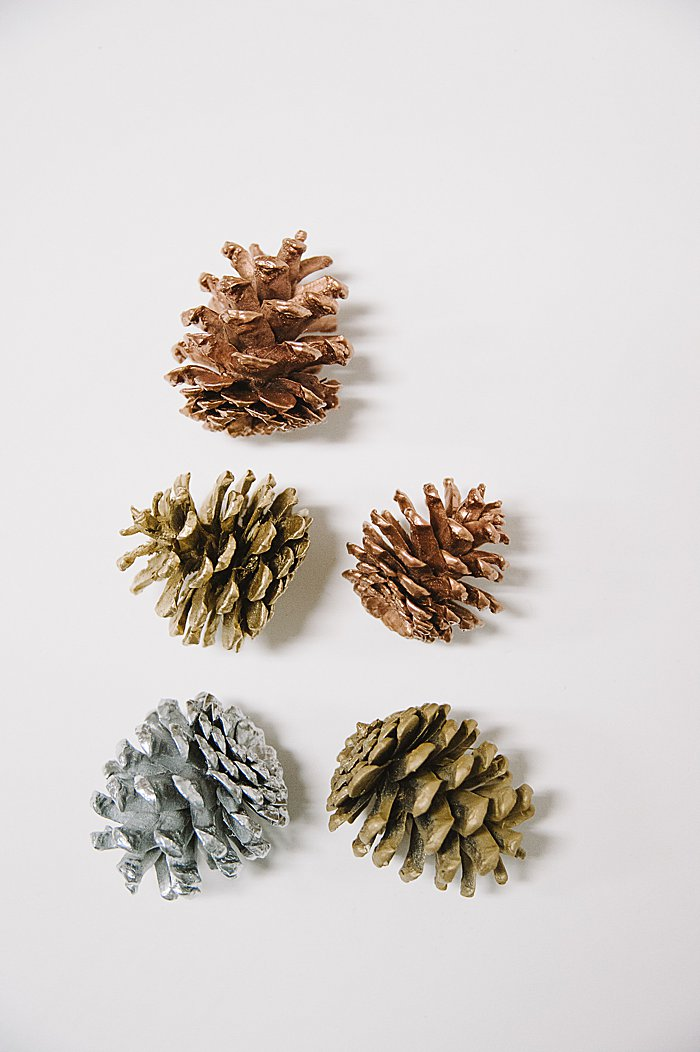 gorgeous painted pine cones