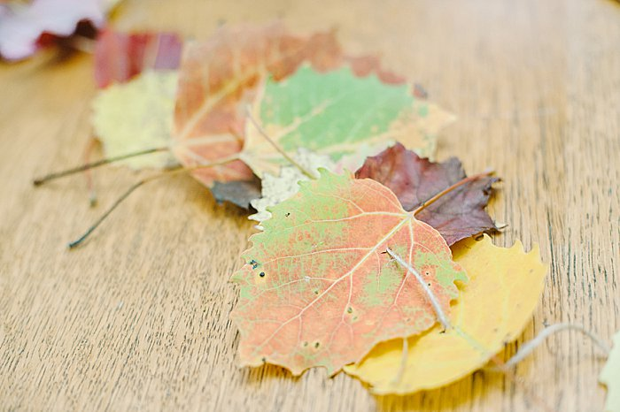 beautiful DIY garland for fall with autumn leaves