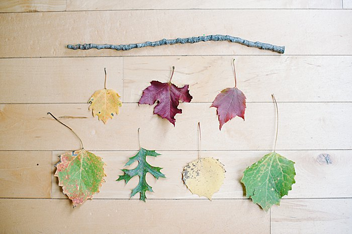 decide on the order of leaves for the wall art