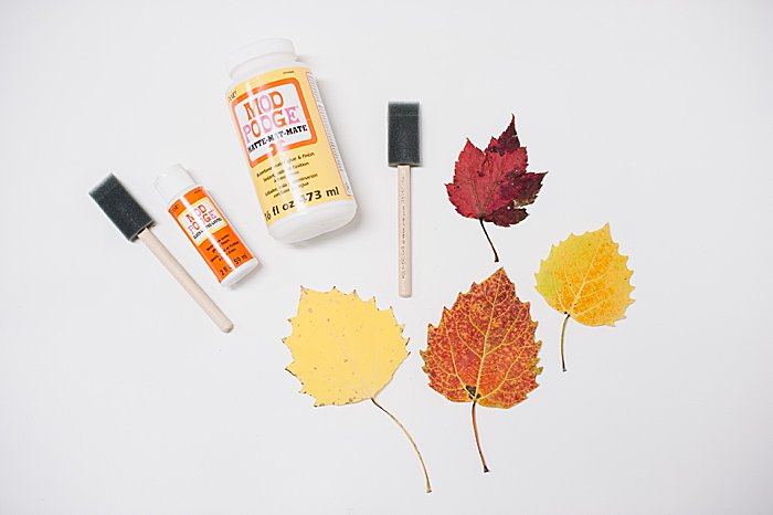 supplies to make easy diy mod podge leaves