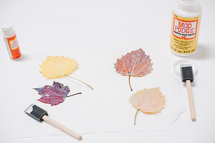 paint leaves with layer of mod podge