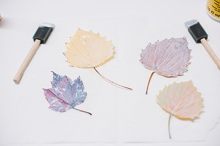 paint another coat of mod podge on the front of the leaves to preserve them