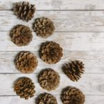 How to Prepare Pinecones for Crafts