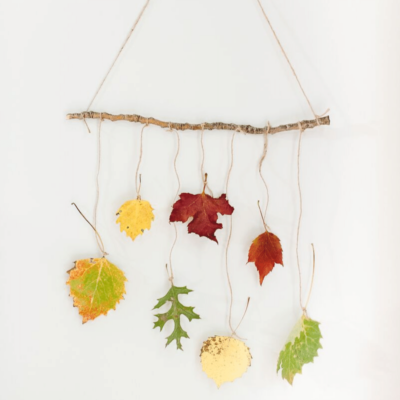 How to Make a DIY Leaf Wall Hanging