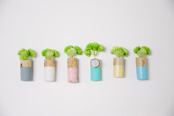 How to make DIY cork planter magnets