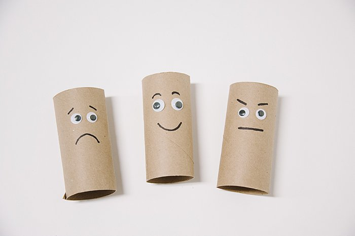 DIY Toilet Paper Roll Emotion Buddies