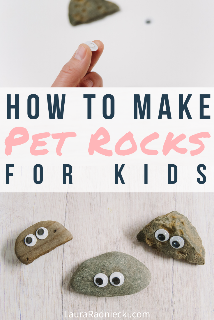How to Make Pet Rocks for Kids _ Easy DIY Kids Crafts