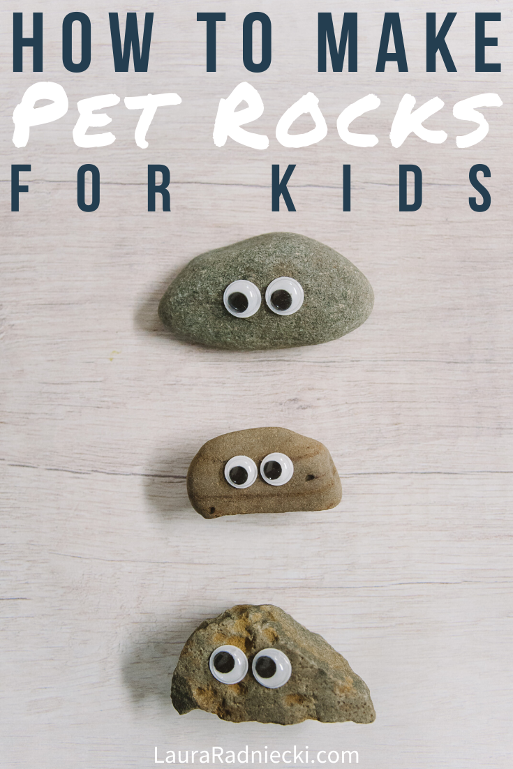 How to Make Pet Rocks for Kids | Easy DIY Kids Crafts